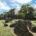 Taman Wisata Leang Leang